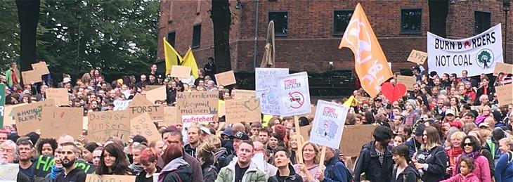 Solidarität mit dem Hambacher Wald